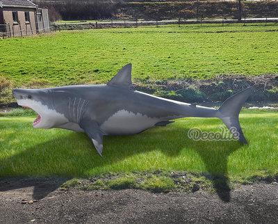 Haai -witte haai-beeld polyester