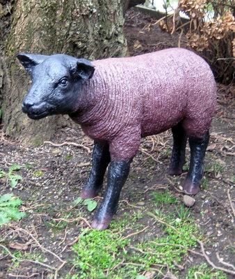 Texels lam - levensgroot - zwart