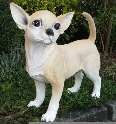Chihuahua beeld polyester