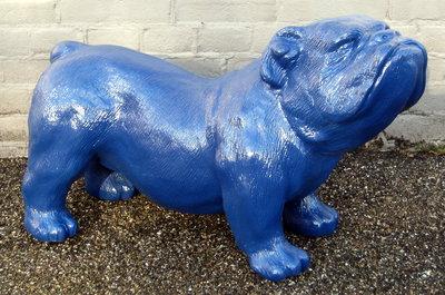 engelse bulldog-Ceasar-65 cm -polyester beeld blauw