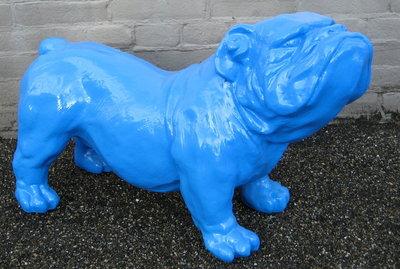 engelse bulldog Ceasar 65cm polyester aqua blauw