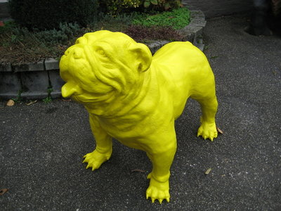 engelse bulldog Spike geel