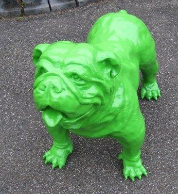Engelse bulldog Spike groen