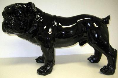 engelse bulldog halsband polyester beeld zwart hoogglans