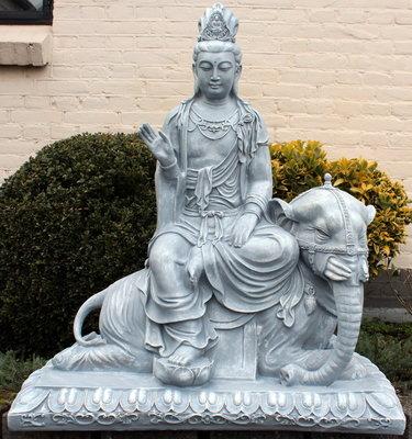 Samantabhadra Bodhisattva beeld