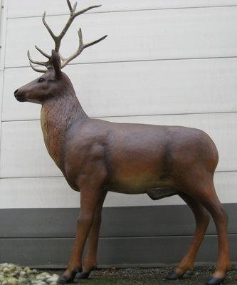 hert met gewei  levens groot 230cm
