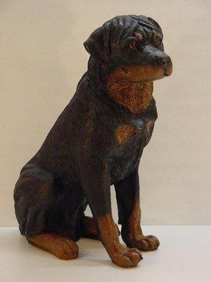 Hond beeld Rottweiler Zittend