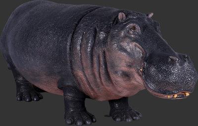 Levensgroot nijlpaard