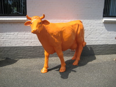 Levensgrote koe - oranje