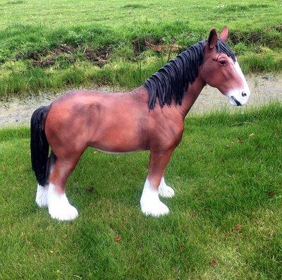 Tinker paard bruin