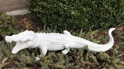 Krokodil beeld polyester decolife dé polyesterbeelden en