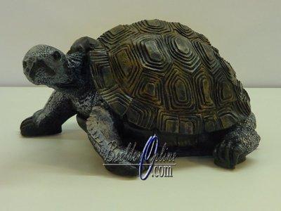 Schildpad 30 cm
