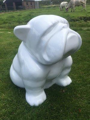 Engels bulldog - abstracte kunst uitvoering - wit