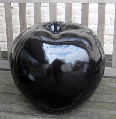 Appel polyester zwart hoogglans met  45cm
