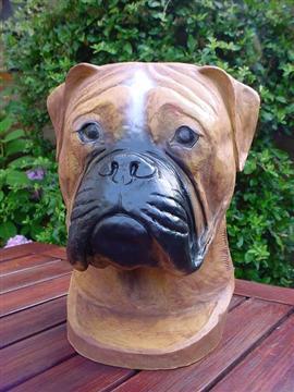 Boxer decoratie beeld  40cm Gebronsd
