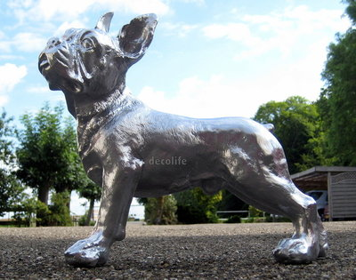 franse bulldog  polyester chromed 37cm