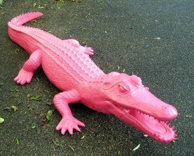 krokodil 220cm roze