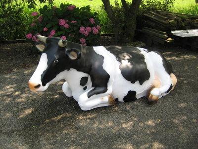 Koe liggend - zwartbont - Boukje