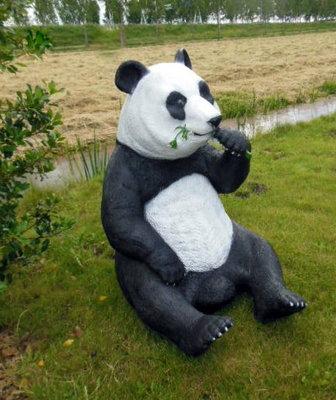 Panda Beer groot zittend