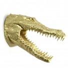 Krokodil kop