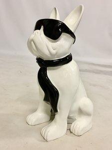 franse bulldog zittend met zonnebril-wit