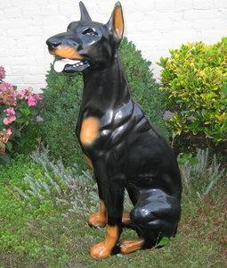 dobermann hond beeld zittend