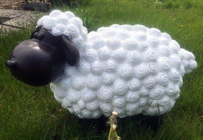 trendy schaap wollie