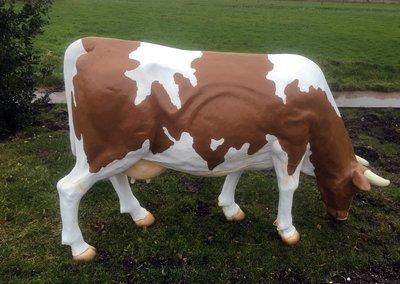 koe roodbont 220x150cm