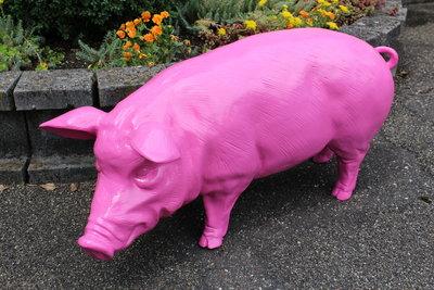 varken fuchsia roze polyresin
