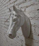 wit paardenhoofd