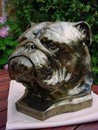 engels bulldog decoratie beeld